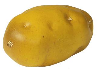 Comestibles artificielles - Pomme de terre germee comestible ...