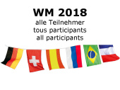 Fahnenkette gross 32 Nationen WM 2018 Stoff
