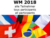Fahnen/Flaggen-Set 32 Nationen WM 2018 Stoff