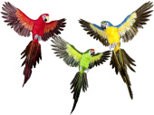 parrot Lara flying 60 x 55cm in diff. colors